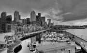 downtown seattle waterfront monochrome