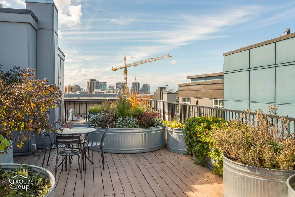 Trace Lofts condos Capitol Hill Seattle roof deck 2