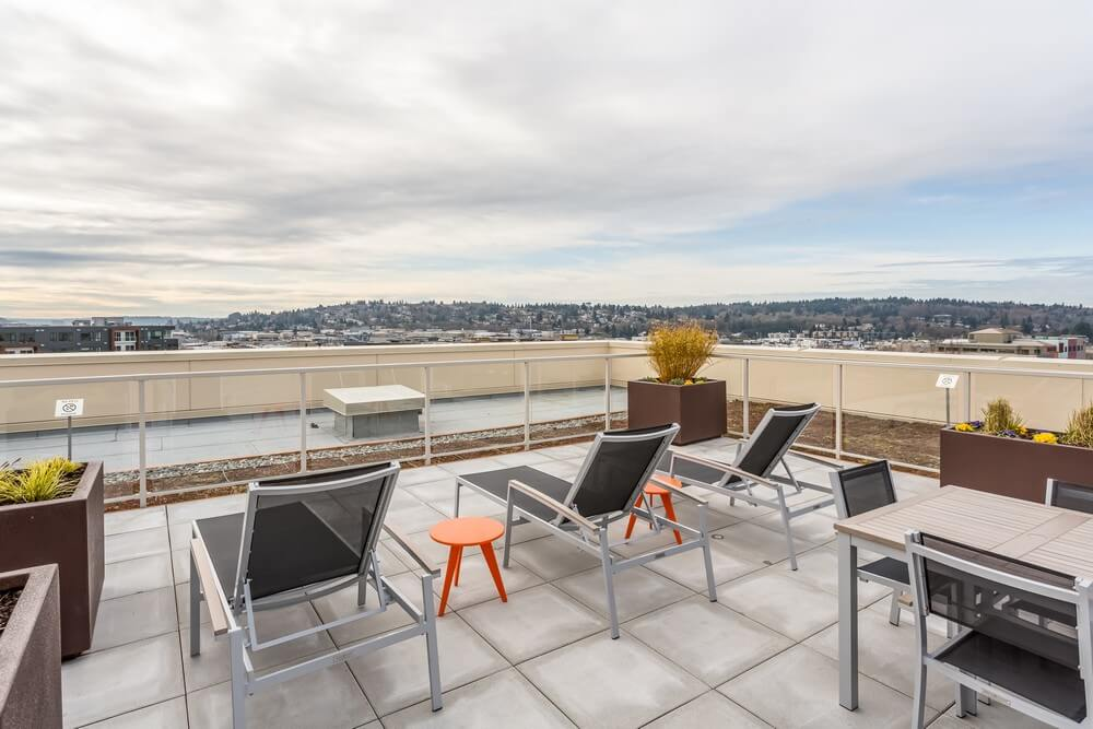 vik condos ballard Seattle roof deck 2